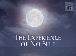 The Experience of No Self