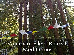 Vajrapani Meditations 2012