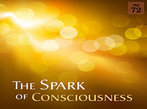 The Spark of Consciousness