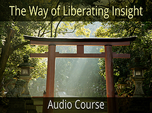 The Way of Liberating Insight - Part 1