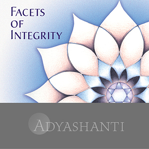 Facets of Integrity