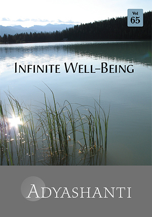Infinite Well-Being - Vol. 65