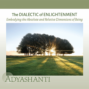 The Dialectic of Enlightenment ~ <i>Embodying the Relative and Absolute Dimensions of Being</i>