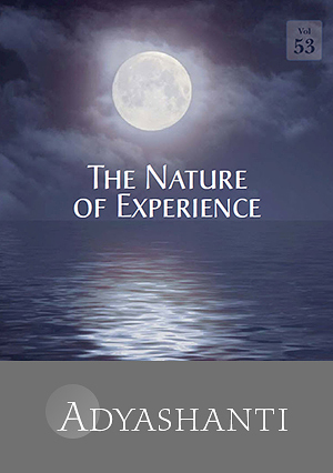 The Nature of Experience - Vol. 53 - SPECIAL