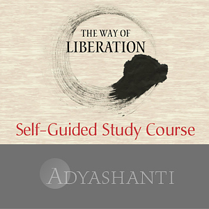 The Way of Liberation ~ Study Course