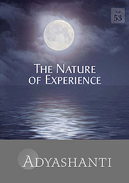 The Nature of Experience - Vol. 53