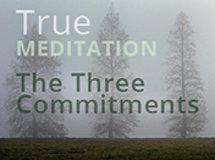 True Meditation: The Three Commitments
