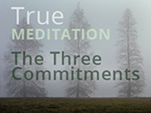 True Meditation: The Three Commitments